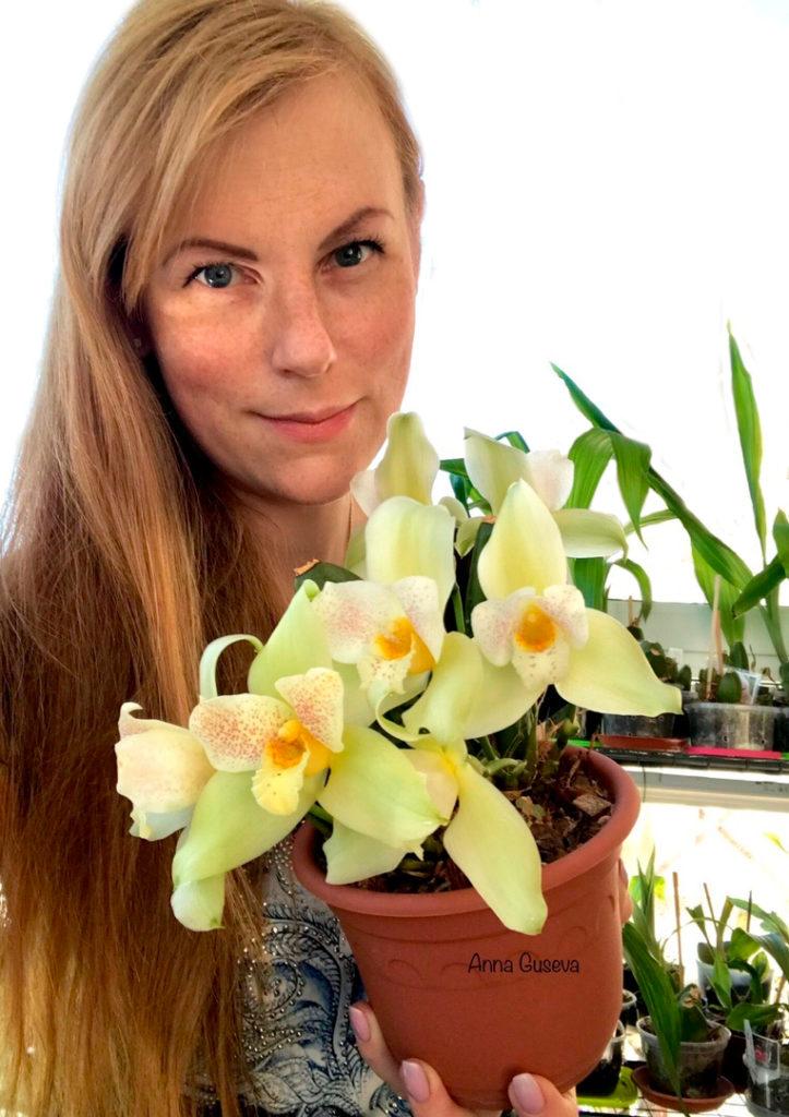 Анна Гусева, основатель GusevOrchids
