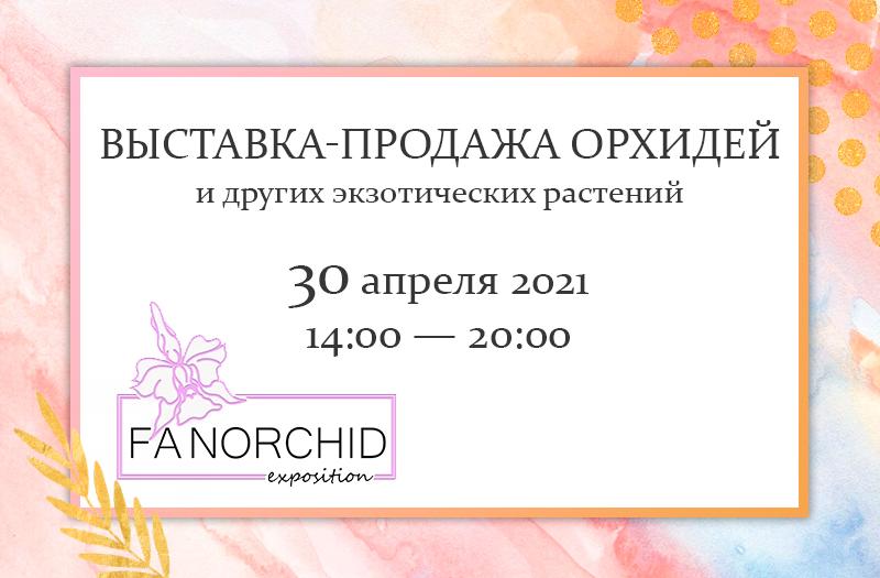 Выставка-продажа орхидей FANORCHID